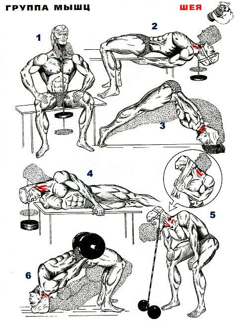 Как накачать шею в домашних условиях быстро