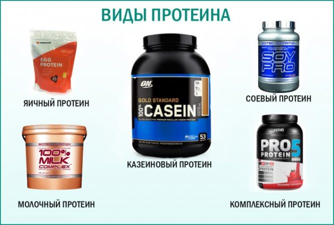 Лучший протеин для набора мышечной массы и похудения, виды белка