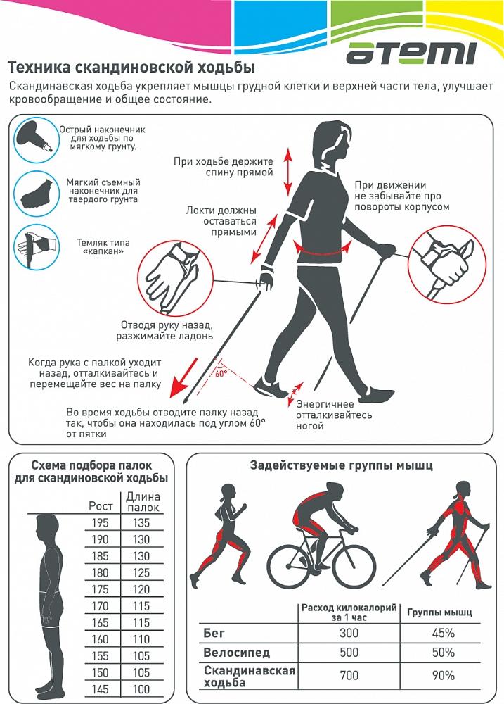 Правила скандинавской ходьбы с палками для пожилых: пошагово