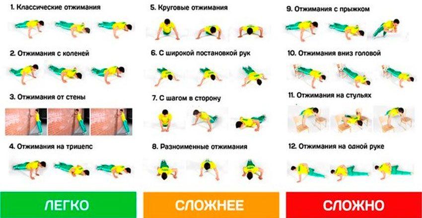Какие группы мышц качаются при отжиманиях от пола