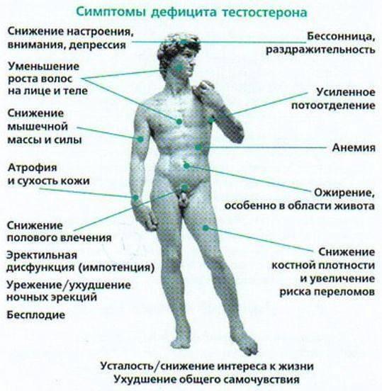Низкий уровень тестостерона у мужчин: признаки, лечение, причины, что делать, последствия