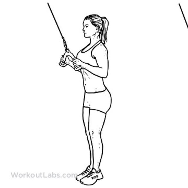 Сгибание рук в кроссовере: техника стоя в нижнем и верхнем блоке