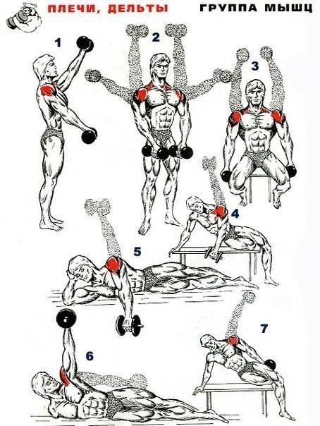 Как накачать плечи без гантелей, штанги и тренажеров в домашних условиях