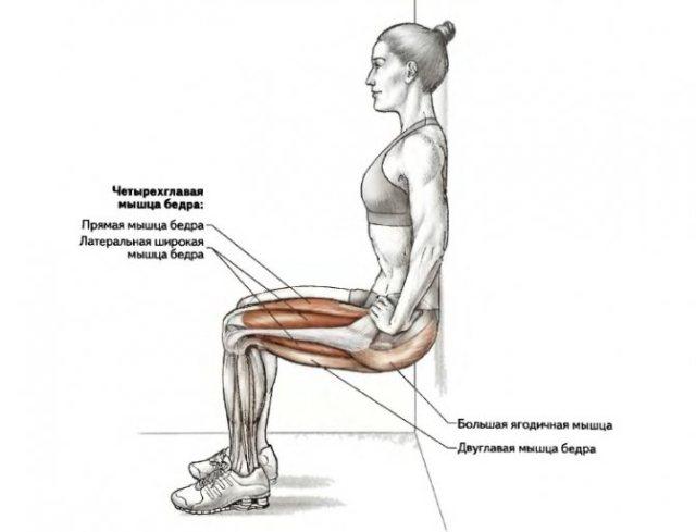 Упражнение стульчик у стены: какие мышцы работают, как делать