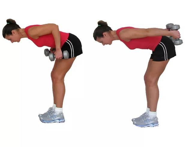 Тяга гантелей в наклоне к поясу. техника выполнения. на какие мышцы упражнение