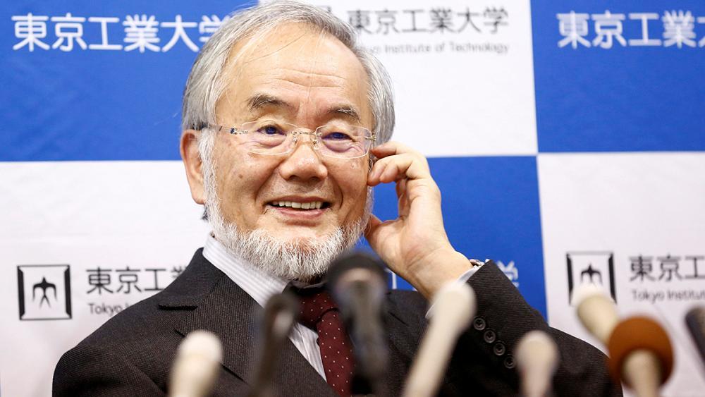 Нобелевская премия за голодание: что открыл ёсинори осуми