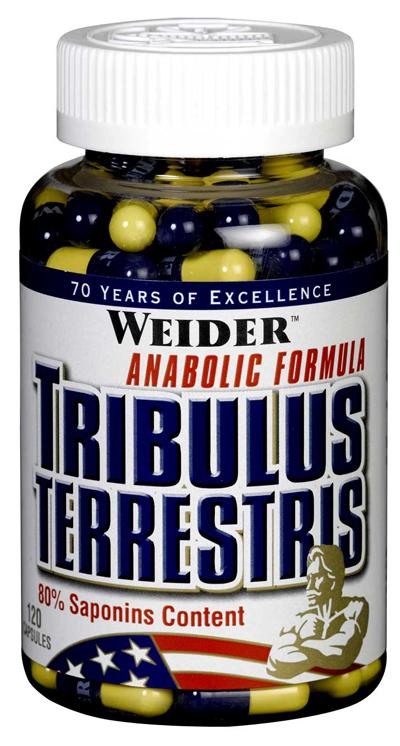 Трибулус террестрис: как принимать для повышению тестостерона