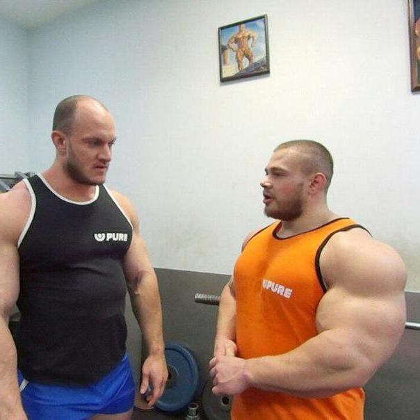 Программа тренировок по шейко б. и. развитие силы и набор массы - пауэрлифтинг, бодибилдинг, программы тренировок, спортивное питание