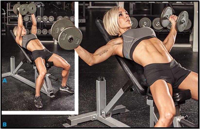 Упражнения в зале для девушек: комплексы упражнений + фото
