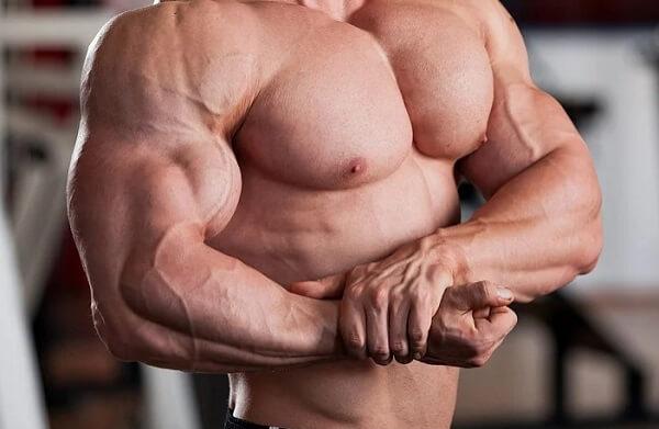 Почему медленно растут мышцы