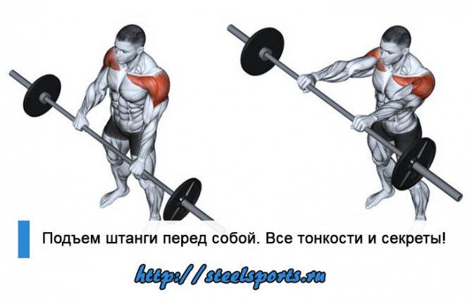 Как сделать мышцы рельефными: грамотный тренинг и питание