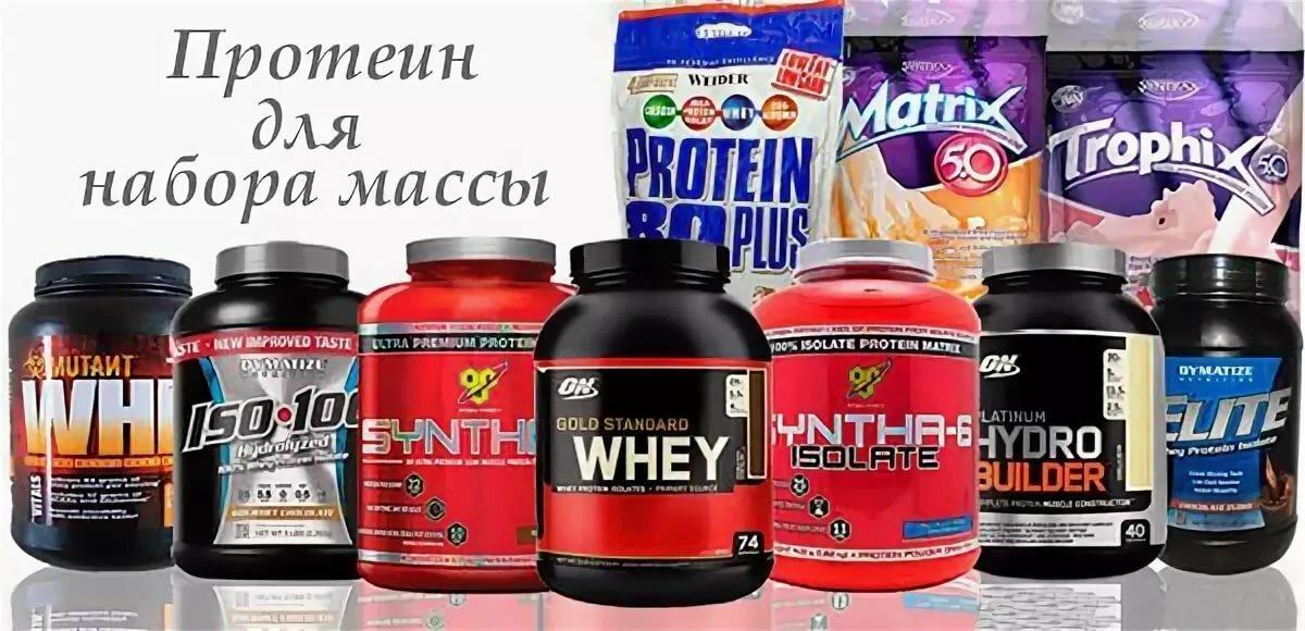 На что обращать внимание при покупке протеина?