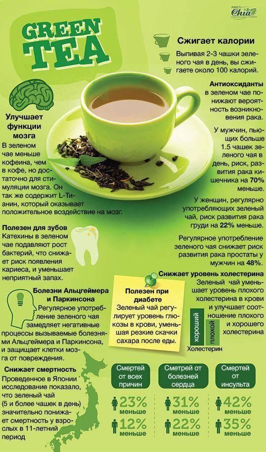 12 причин употреблять зеленый чай. польза и вред продукта
