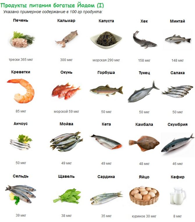 Йод и его важность в рационе питания. / fitexpert.biz