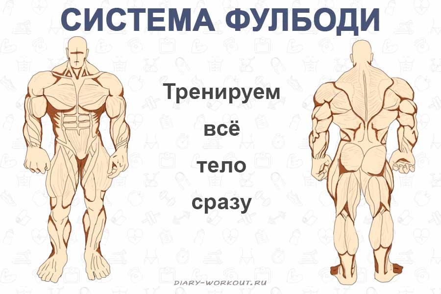 3 жиросжигающих тренировки фулбоди - dailyfit