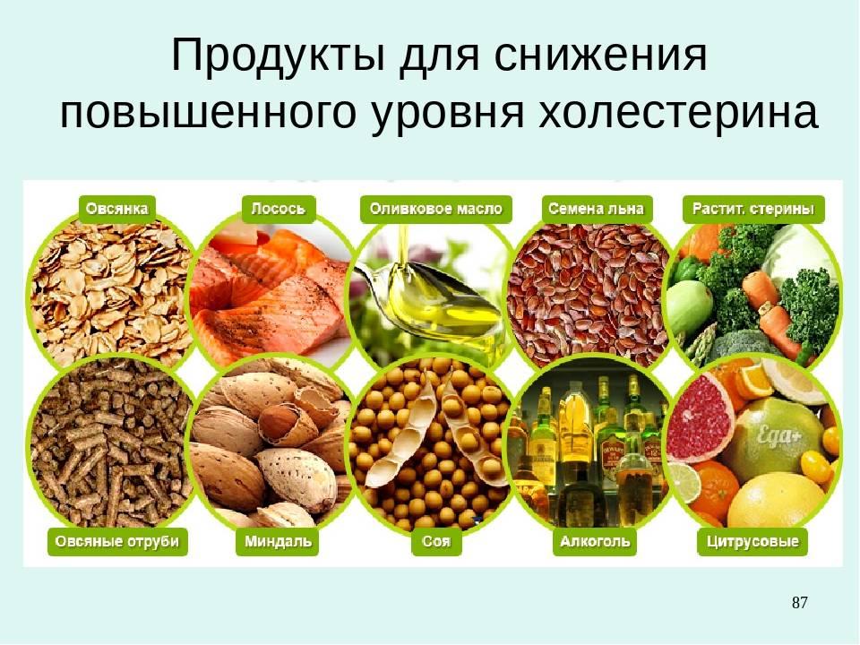 Содержание холестерина в продуктах питания [таблица + инфографика]