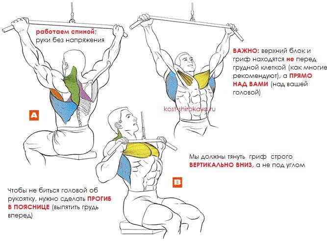 Тяга верхнего блока (за голову, перед собой), тяга вертикального блока; техника; как научиться подтягиваться
