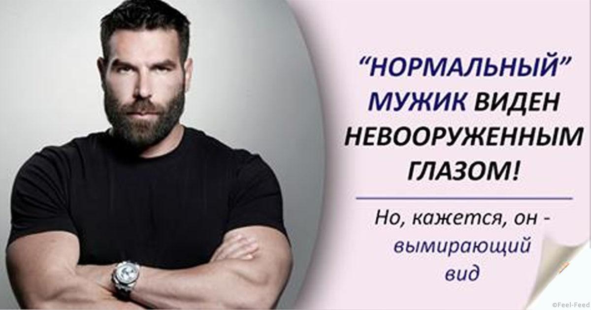 Какой должен быть мужчина? что самое главное в мужчине. настоящий мужчина: качества