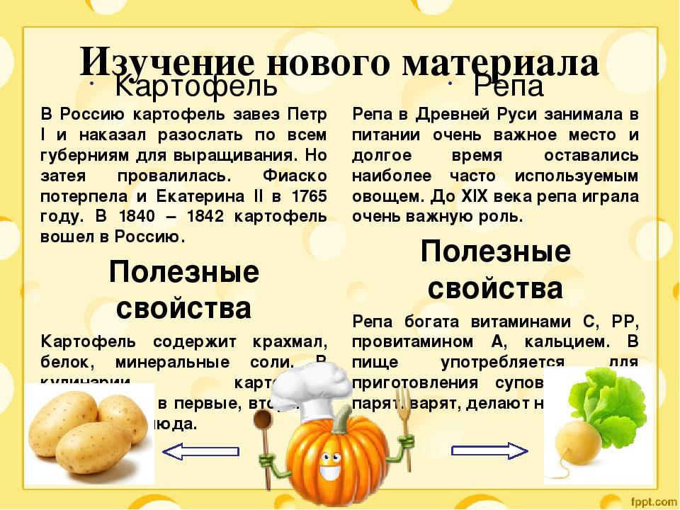 Вареные овощи: польза и вред, рецепты