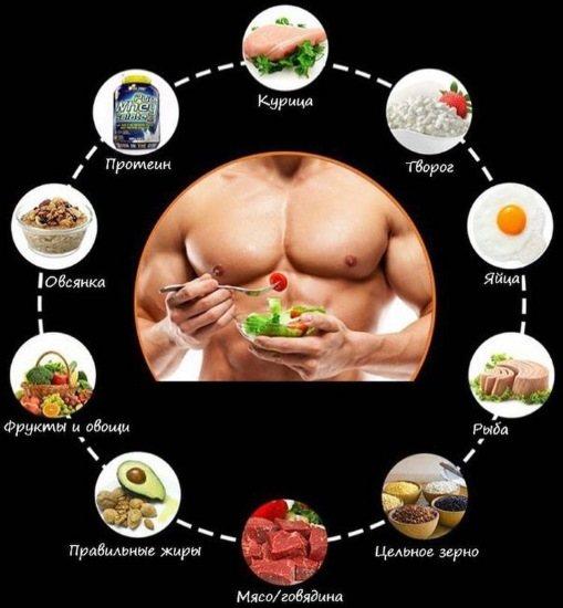 Вегетарианство в бодибилдинге. с чего набирать массу веганам? [часть 2]