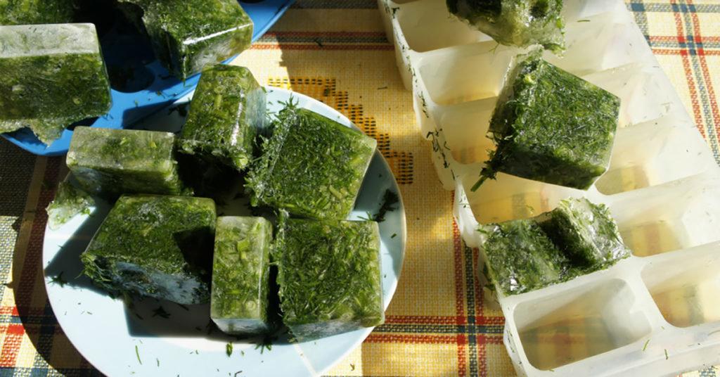 Заморозка продуктов в морозилке, как вариант заготовки на зиму