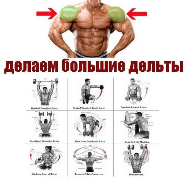 Как накачать плечи