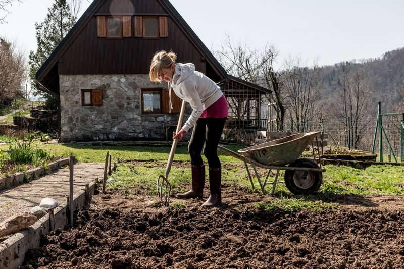 Лентяйный огород. секреты сибмам - огород