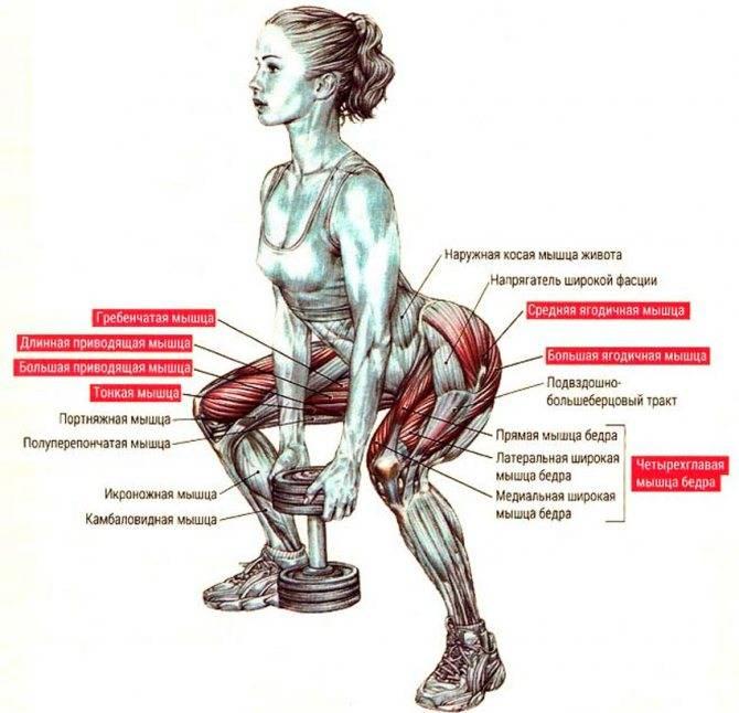 Глубокий присед техника выполнения, польза и вред упражнения
