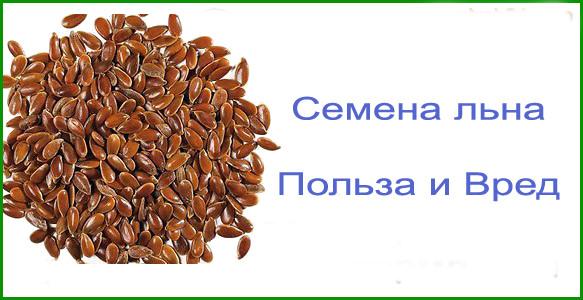 """""""польза семян льна: лечебные свойства для организма и применение дома"""""""