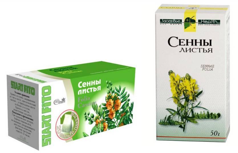 Польза и вред травы сенна, применение от запора, для похудения