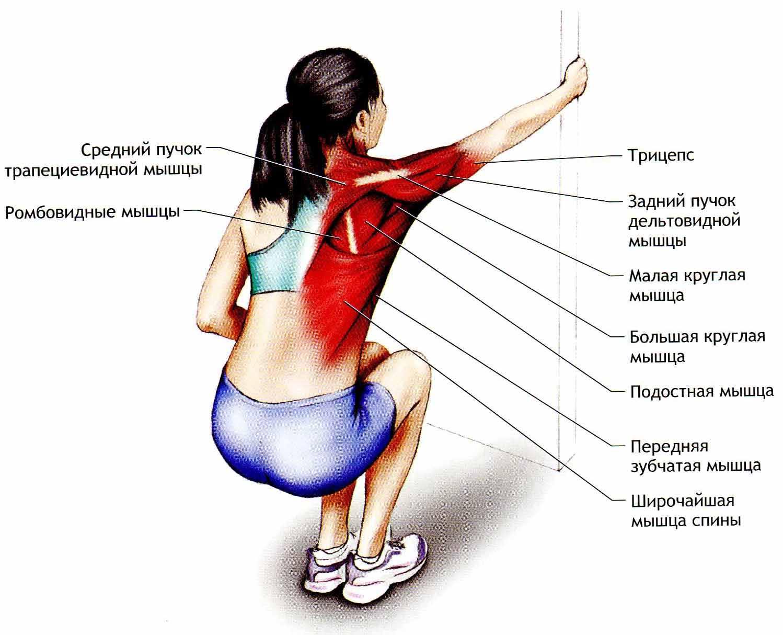 Растяжение мышц: причины и симптомы, что делать, первая помощь, лечение мазями и другими средствами