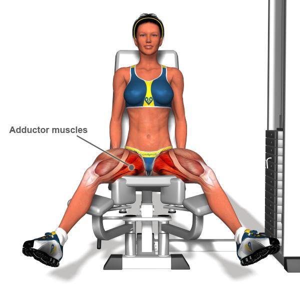 Упражнения на квадрицепс бедра