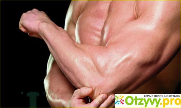 Молочная кислота в организме человека — как избавиться от боли?