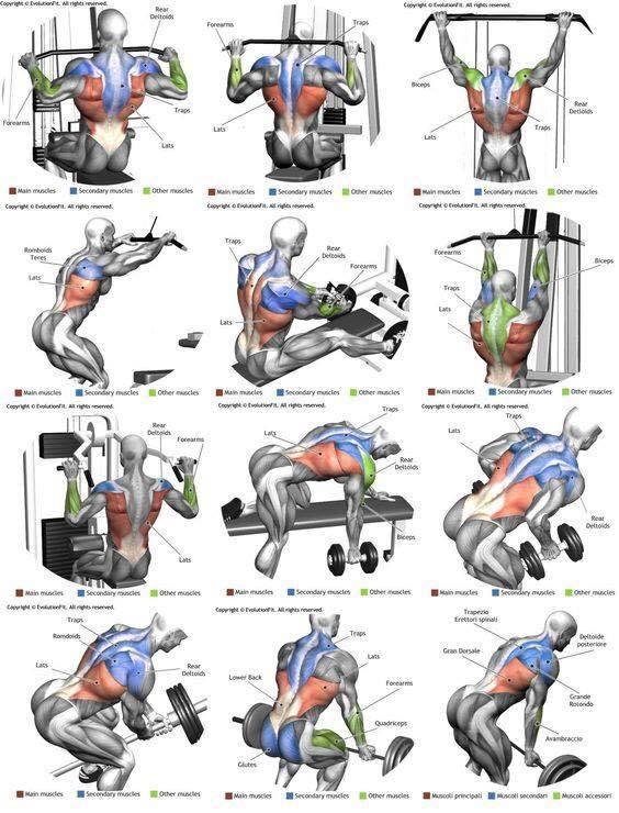 Упражнение стульчик у стены: какие мышцы работают, для чего нужно, сколько по времени делать