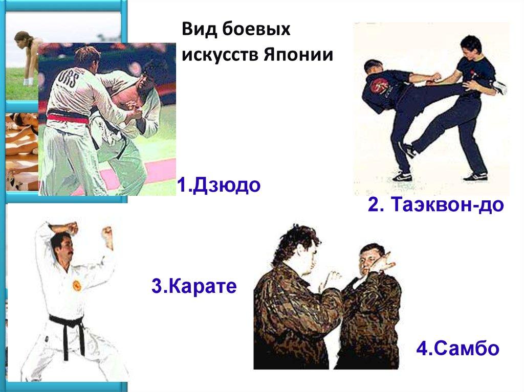 Какой вид рукопашного боя самый эффективный. боевые искусства: история, классификация, виды