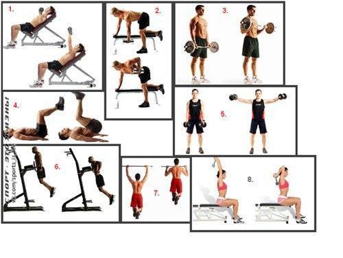 Круговая тренировка в тренажерном зале/дома - техника выполнения