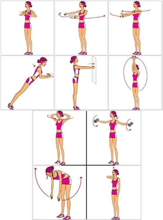 Комплекс упражнений для увеличения грудных мышц в домашних условиях