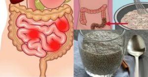 Как быстро и эффективно улучшить работу кишечника