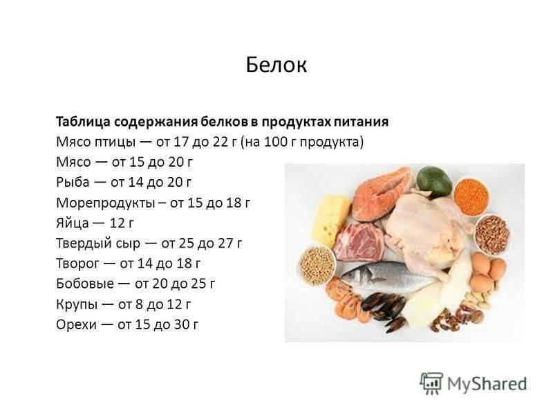 Белковая пища: список продуктов, содержащих белок в большом количестве, таблица