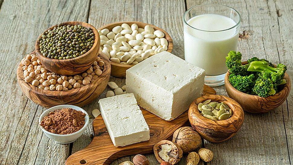 Чем отличается животный белок от растительного