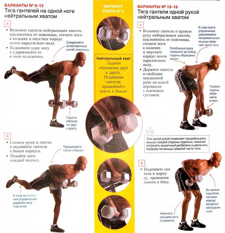 Программа тренировок с гантелями дома, для мужчин и для девушек