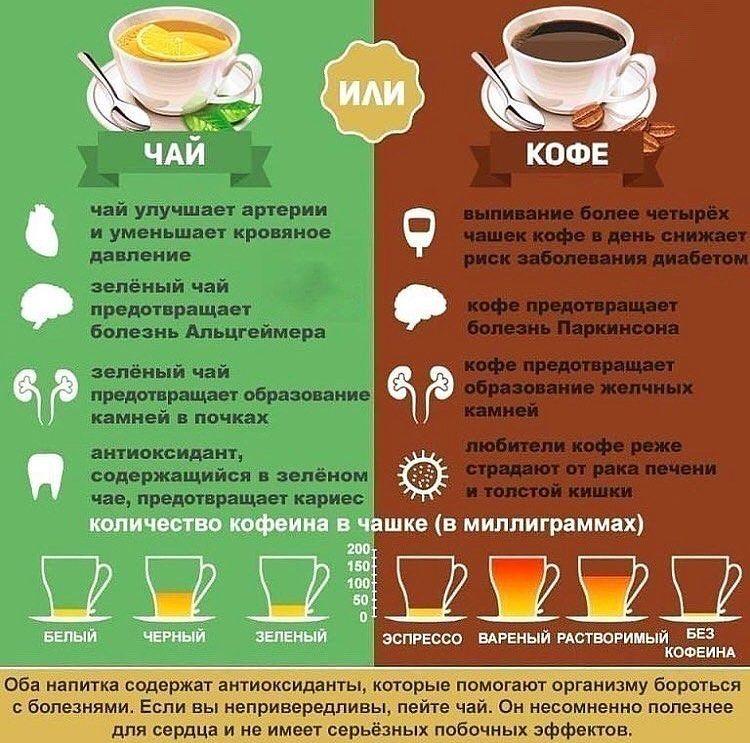 Чай или кофе: что лучше, сравнение вредных и полезных свойств, содержание кофеина