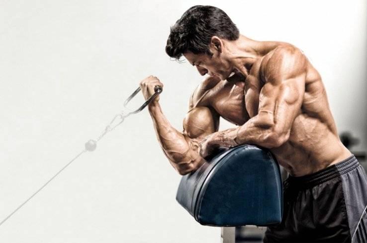 Набор мышечной массы стоит ли бегать