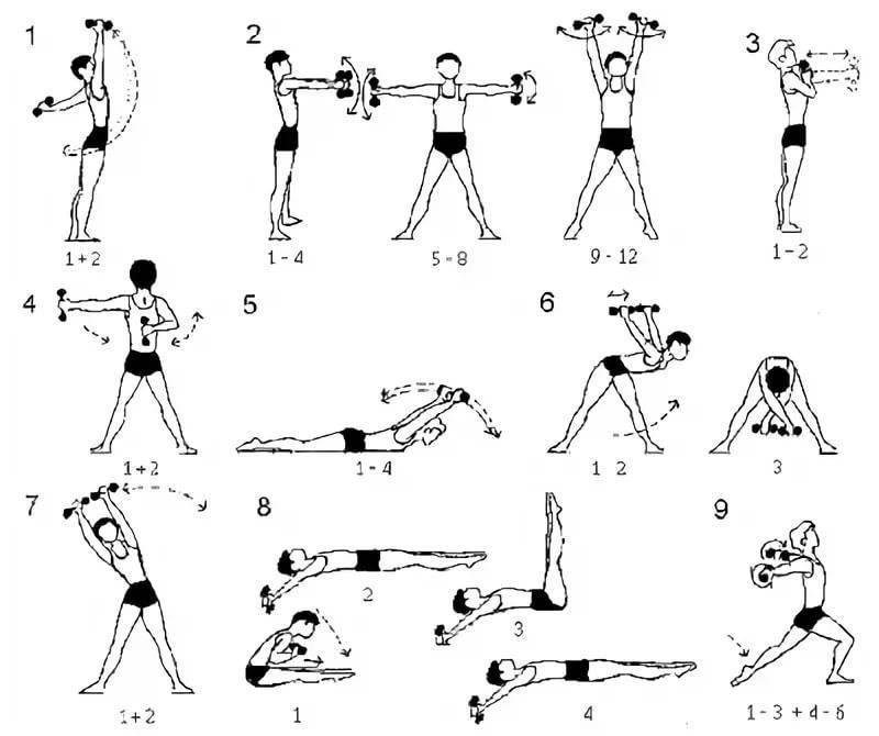 Упражнения с гантелями для девушек для домашних занятий