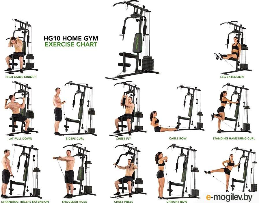 Значимость для организма работы с весом: принципы силовых тренировок