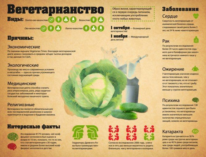 Совместимы ли бодибилдинг и вегетарианство?