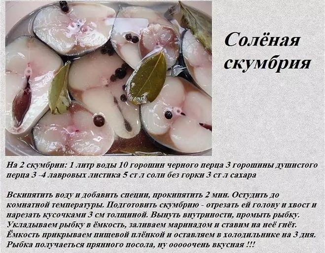 Можно ли засолить рыбу за 2 часа: полностью безопасный рецепт соленой горбуши — не отличить от семги! - будет вкусно! - медиаплатформа миртесен