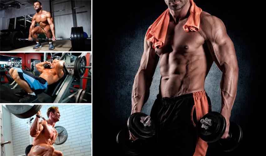 Базовые упражнения в бодибилдинге: список | построй себя сам!