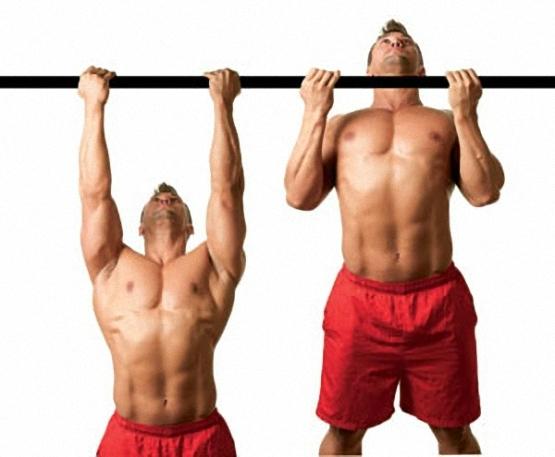 Подтягивания параллельным хватом. суперупражнение для широчайших | bestbodyblog.com