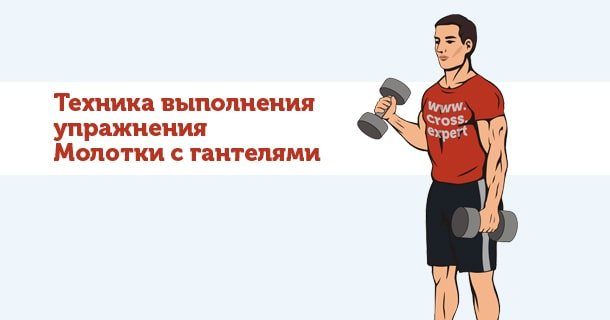 Эффективные упражнения с гантелями для мышц рук